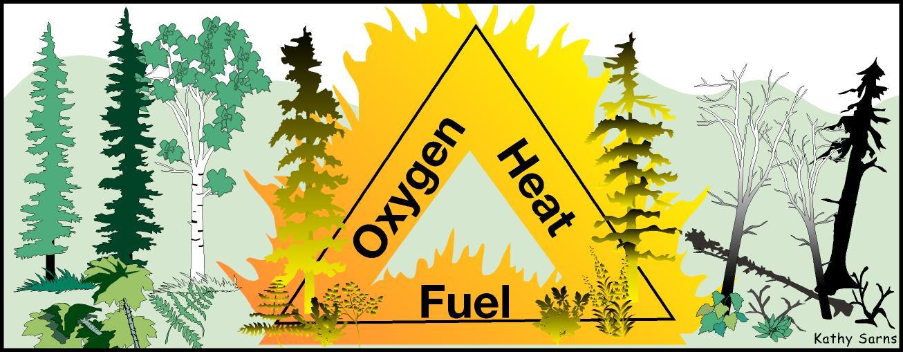 ii 10 usfws alaska fire management